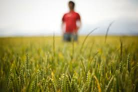 boy in feild
